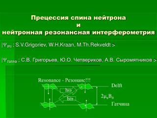 Прецессия спина нейтрона  и  нейтронная резонансная интерферометрия