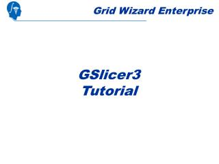 Grid Wizard Enterprise
