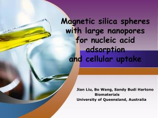 Magnetic silica spheres with large nanopores for nucleic acid adsorption and cellular uptake