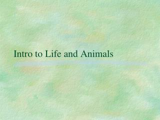 Intro to Life and Animals
