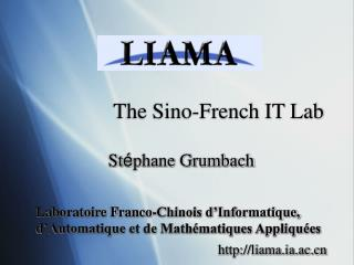 The Sino-French IT Lab