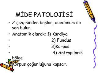 MİDE PATOLOJİSİ