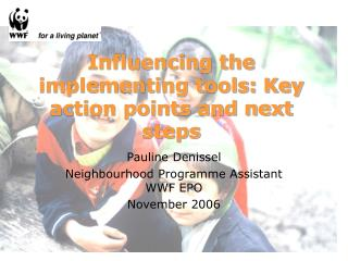 Influencing the implementing tools: Key action points and next steps