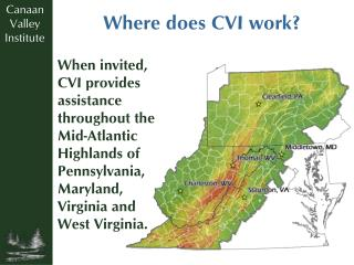 Where does CVI work?
