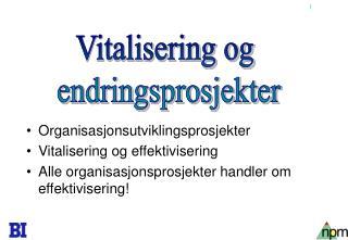 Organisasjonsutviklingsprosjekter Vitalisering og effektivisering