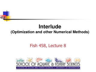 Interlude Optimization and other Numerical Methods
