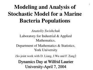 Modeling and Analysis of Stochastic Model for a Marine Bacteria Populations
