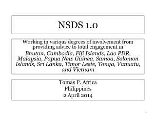 NSDS 1.0