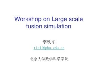 Workshop on Large scale fusion simulation