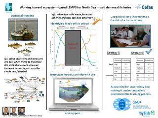 Working toward ecosystem-based LTMPS for North Sea mixed  demersal  fisheries