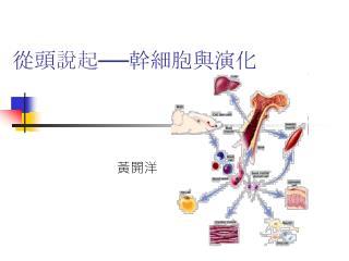 從頭說起──幹細胞與演化