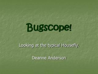 Bugscope!