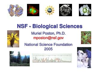 NSF - Biological Sciences