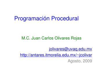 Programación Procedural