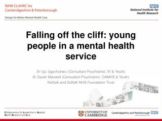 Falling off the cliff: young people in a mental health service