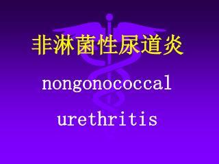 非淋菌性尿道炎 nongonococcal  urethritis
