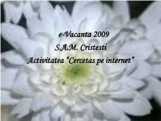 E-Vacanta 2009 S.A.M. Cristesti Activitatea  Cercetas pe internet