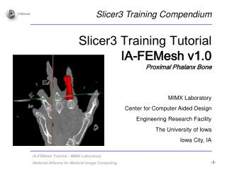 Slicer3 Training Tutorial IA-FEMesh v1.0 Proximal Phalanx Bone