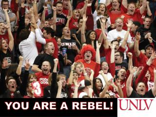 YOU ARE A REBEL!