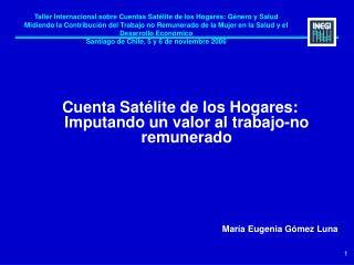 Taller Internacional sobre Cuentas Sat lite de los Hogares: G nero y Salud Midiendo la Contribuci n del Trabajo no Remun