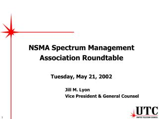 NSMA Spectrum Management Association Roundtable Tuesday, May 21, 2002 Jill M. Lyon