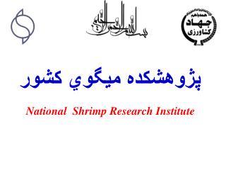 پژوهشكده ميگوي كشور National  Shrimp Research Institute