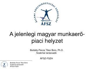 A jelenlegi magyar munkaerő-piaci helyzet