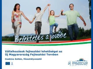 Vállalkozások fejlesztési lehetőségei az Új Magyarország Fejlesztési Tervben