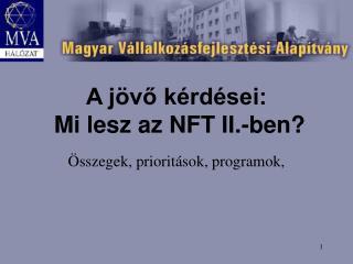 A jövő kérdései:  Mi lesz az NFT II.-ben?