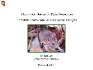 Omnivory Driven by Pulse Resources  in White-footed Mouse  Peromyscus leucopus