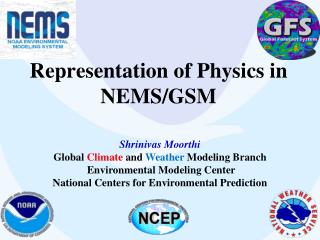 Representation of Physics in NEMS/GSM