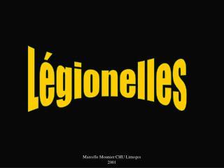 Marcelle Mounier CHU Limoges 2001