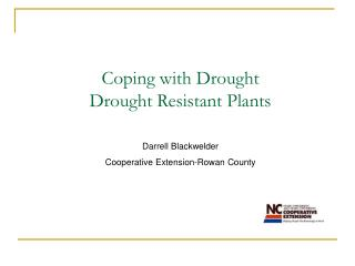 Coping with Drought  Drought Resistant Plants