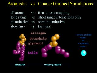 Atomistic   vs.  Coarse Grained Simulations