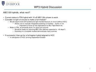 WP3 Hybrid Discussion