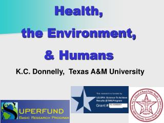 Health,  the Environment,  & Humans K.C. Donnelly,  Texas A&M University