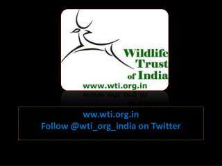ww.wti Follow  @wti_org_india on Twitter