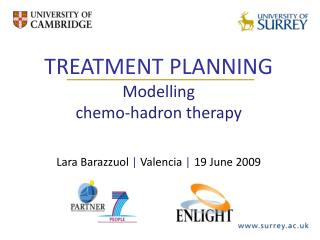 TREATMENT PLANNING Modelling  chemo-hadron therapy