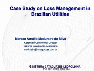 Case Study on Loss Manegement in Brazilian Utilities