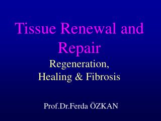 Tissue Renewal and Repair  Regeneration , Healing & Fibrosis