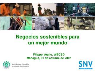 Negocios sostenibles para  un mejor mundo