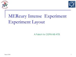 MERcury Intense  Experiment Experiment Layout