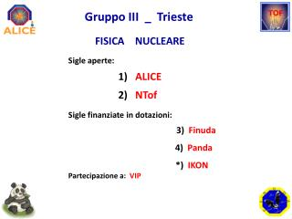 Gruppo  III  _  Trieste     FISICA    NUCLEARE