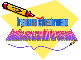 Organizarea resurselor umane
