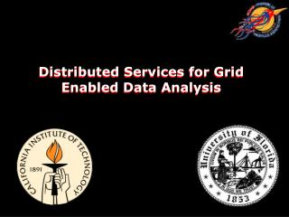 Distributed Services for Grid Enabled Data Analysis