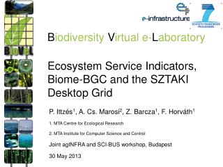 Ecosystem Service Indicators, Biome-BGC and the SZTAKI Desktop Grid