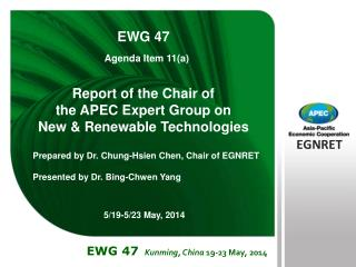 Report of the Chair of  the APEC Expert Group on  New & Renewable Technologies