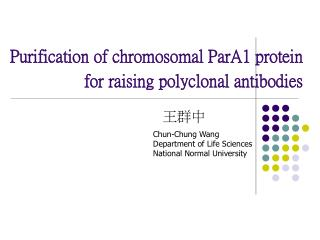 Purification of chromosomal ParA1 protein for raising polyclonal antibodies