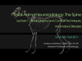 Small Animal Neuroradiology: The Spine  Lecture 1   Radiography and Contrast Techniques, Anomalous Diseases