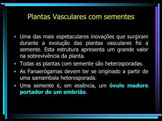 Plantas Vasculares com sementes